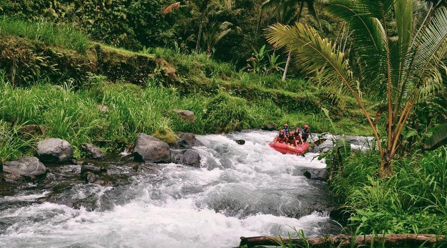 Rafting a Bali: avventura nel cuore della foresta tropicale